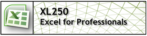 XL250 Excel for Professionals